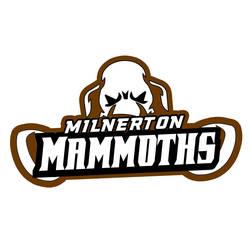 The Mammoth Dodgeball Tournie