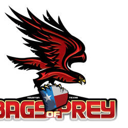 Bags of Prey: Competitive Division