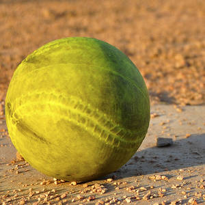 Coed Softball-Fall