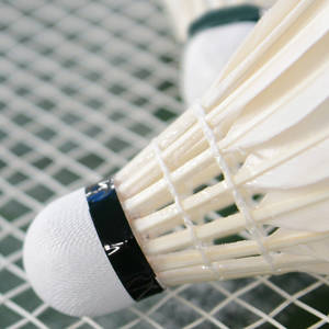 24 Player Badminton Schedule