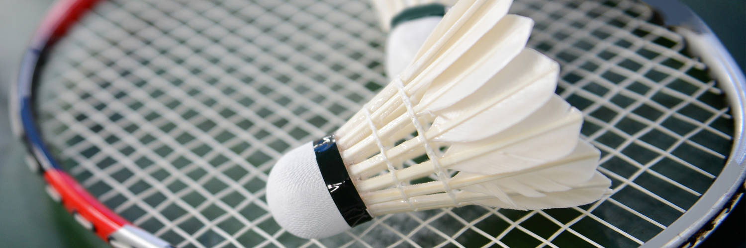 12 Player Badminton Schedule