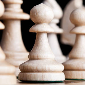chess management software