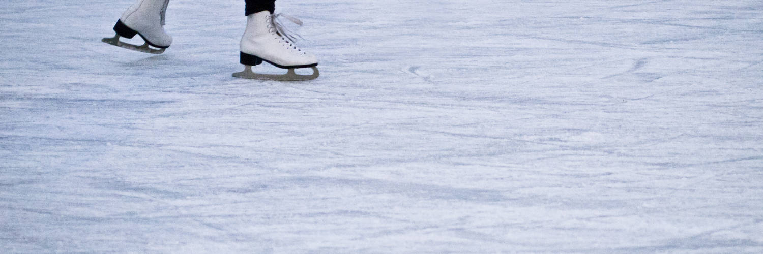 Term 2 Holiday Learn to Skate Classes
