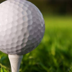 6 Golfer Golf Schedule
