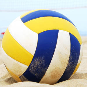 Summer Sunday Volleyball League