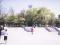 Wilson Skate Park