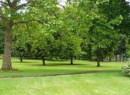 Alberta Park