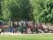 Carrabelle Park