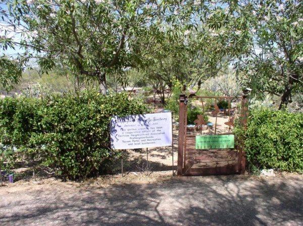 Case Natural Resource Park Tucson Az