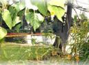 Green Lantern Park