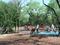 Hardberger Park (Blanco)