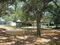 Salvadore Park
