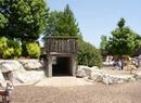 Steinberg Playground