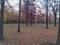Robinwood Park
