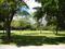 Leucadendra Drive Triangle