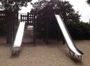 Sigmund Stern Recreation Grove