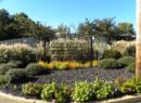 Addie Baldwin Memorial Park