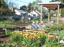 Blair Community Garden