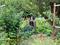 Buckman Community Garden