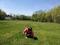 Monongahela Playground