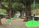 Guerilla Swings