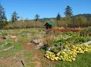 Bayside Park Farm and Community Garden