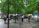 Zuccotti Park - Across From 1 World Trade Center