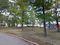 Gleneagles Park / Dog Park