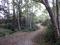 Shay Park