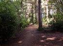 Sunny Brae Park