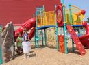 Urban Community School Playground