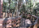 Winston Park Nature Center in Coconut Creek, FL