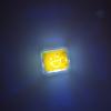 yellow glo pal