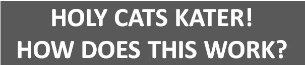 holycats