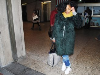 Jasmine Wilson poses in a green fur coat.