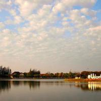 Crop 200 nong prajak public park