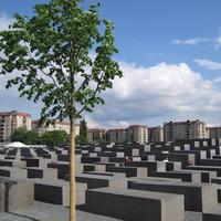 Crop 200 holocaust memorial tree