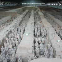Crop 200 the museum of qin terra