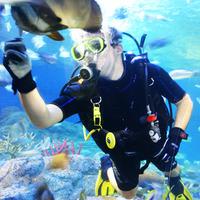 Crop 200 pattaya underwater world dive