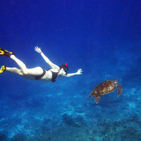 Crop 200 girl snorkel turtle