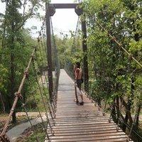 Crop 200 khao kradong forest park