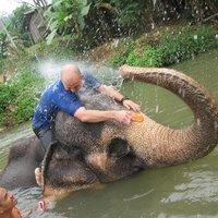 Crop 200 baanchang elephant s