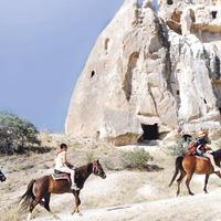 Crop 200 akhal take horse riding center1