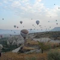 Crop 200 skyway balloons