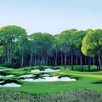 Crop 200 carya golf club 3