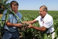 Misgivings About How a Weed Killer Affects the Soil