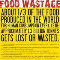 Food waste video