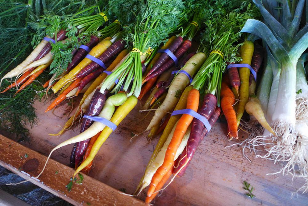 Researchers from Iowa have shown that organic farming methods can yield almost as highly as pesticide-intensive methods