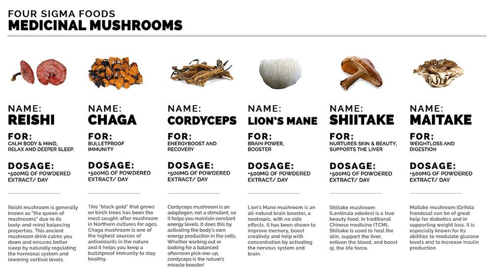 medicinalMushroom2