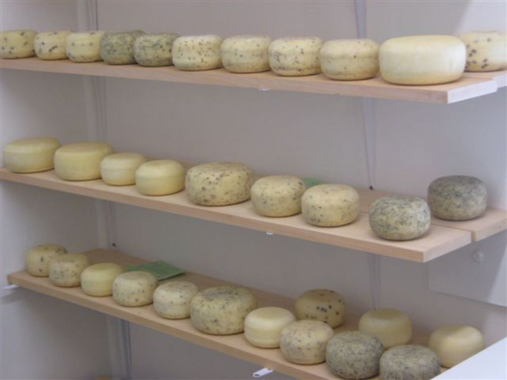 Organic Raw Goat Cheeses